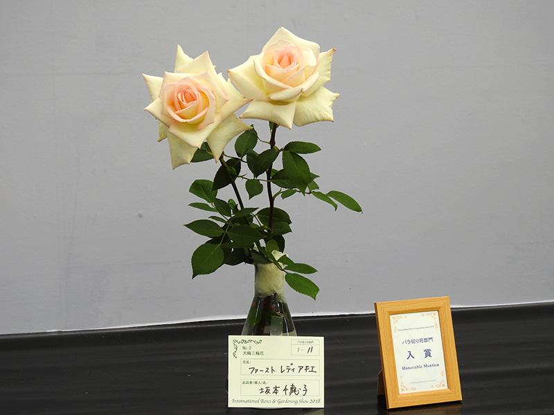 ファーストレディー・アキエは安倍晋三首相夫人の昭恵さんに送られたバラだった