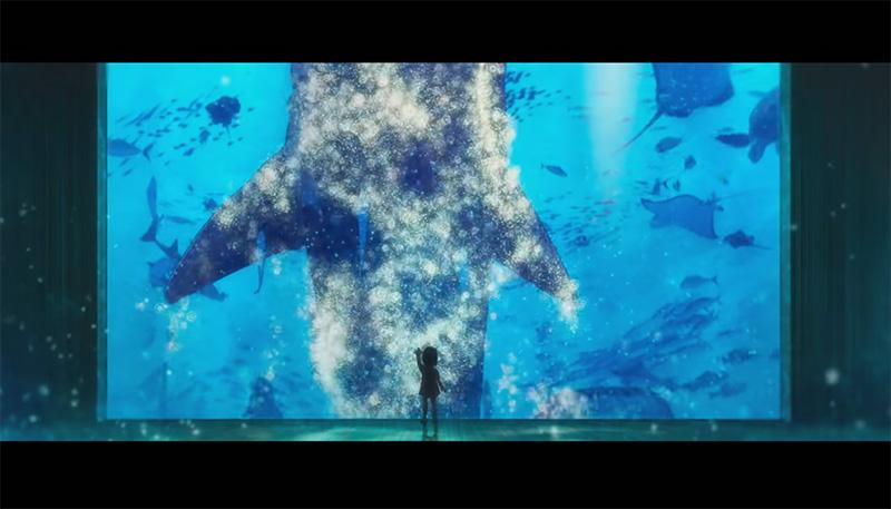 映画 海獣の子供 撮影参考画像